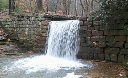 A view of the waterfall on Henry Run. The NCT-Baker trails route passes close by.