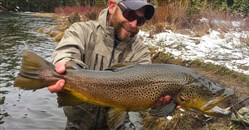 Fly fishing blogger Domenick Swentosky catches more and bigger trout without fly line.